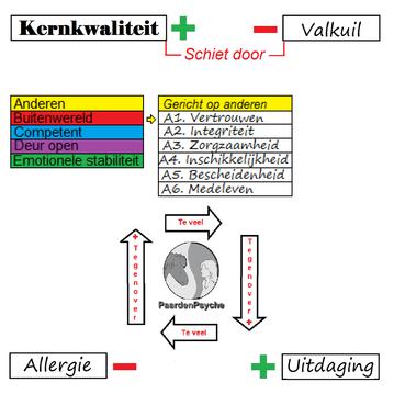 Kernkwadrant: kernkwaliteit, valkuil, uitdaging, allergie