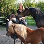 Spiritueel met simulator paarden